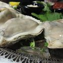Oysters on the Half Shell  - <p>6 or 12</p>