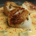Sea Scallop appetizer (served over Creole sauce)